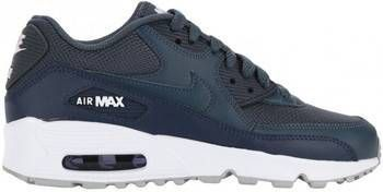 | Nike Air Max 90 Leather PS 833377 602 Roze Paars 35