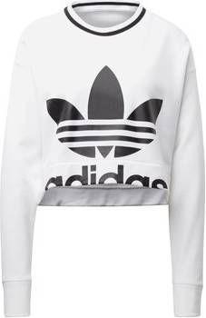 Adidas originals oversized sweater groen Vindjeschoen.nl